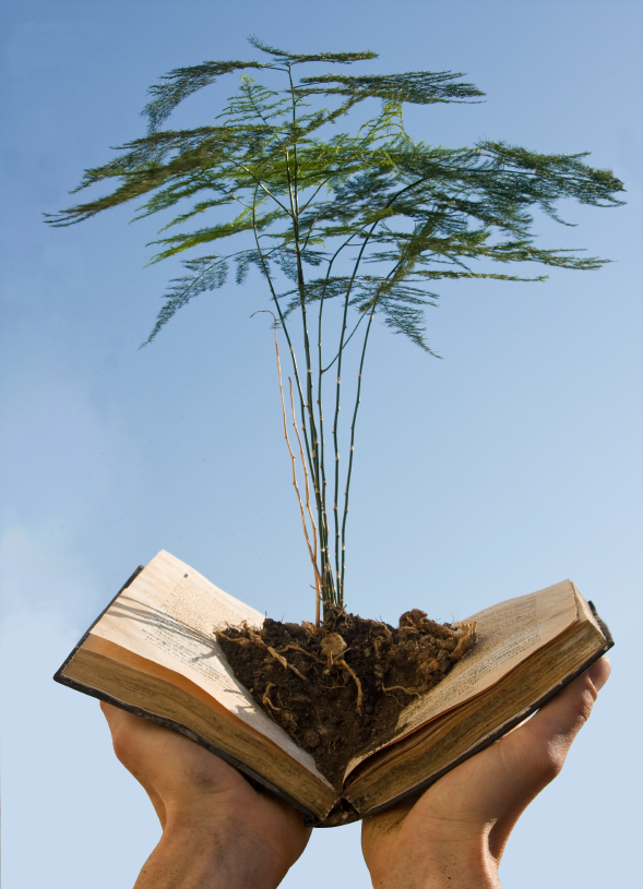 Tree-Growing-from-book